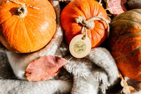 Happy Thanksgiving gift tag with corner border of autumn leaves and pumpkins over a rustic wood background.