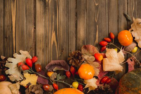 Harvest or Thanksgiving background with autumnal fruits and gourds on rustic wooden table.