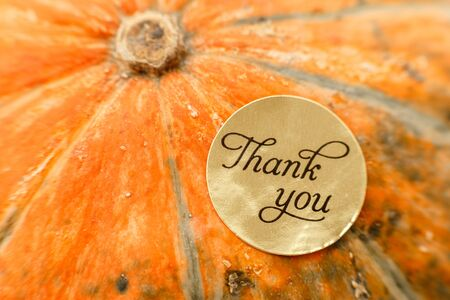 Thank you gift tag on pumpkins over a rustic wood background.