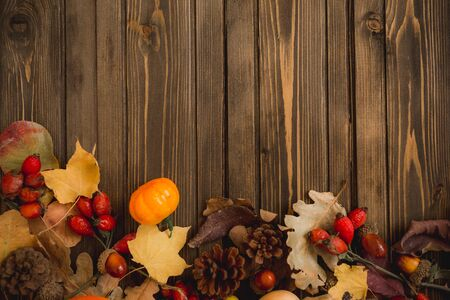 Harvest or Thanksgiving background with autumnal fruits and gourds on rustic wooden table Stockfoto