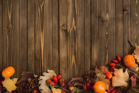 autumn background with colored leaves and pumpkins on wooden board. Imagens