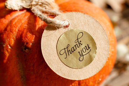 Thank you gift tag on pumpkins over a rustic wood background Stockfoto