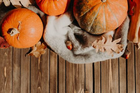 autumn background with pumpkins and colored leaves on wooden board.
