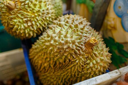 Durian king of fruit.Group of fresh durians in the durian market.The Texture of Durian in the thai market.