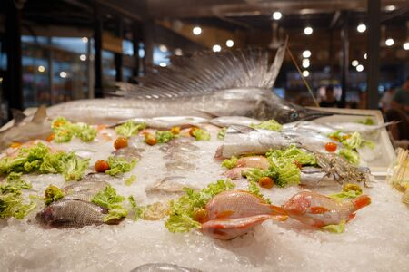 Fresh seafood in the freezer with ice in the night Thailand market. Reklamní fotografie - 135503455