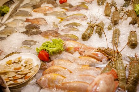 Fresh seafood in the freezer with ice in the night Thailand market. Reklamní fotografie