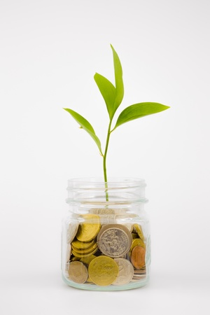 plant and coins in glass jar, currency, investment and business concepts