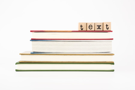 syllabus: text word on wood stamps stack on books Stock Photo
