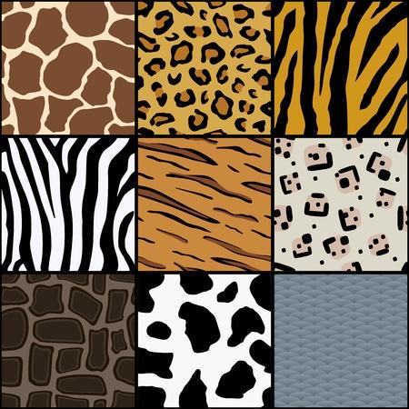 Seamless Animal Texture Stock Photo - 9120329