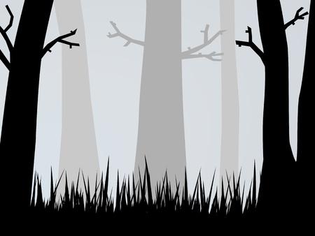Spooky Woods Stock Photo - 10683245