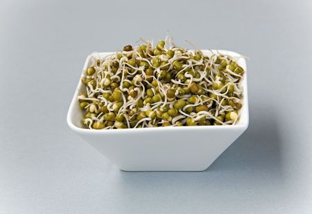 green gram sprouts against light grey background Stock Photo - 7678775