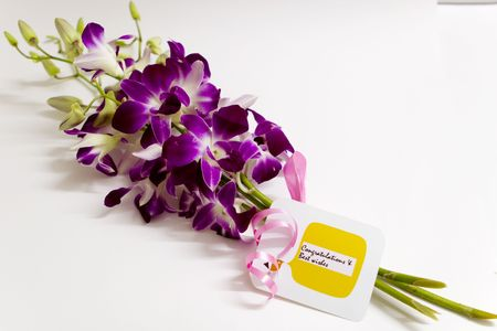 good wishes: Good Wishes with Dendrobium Orchid bunch