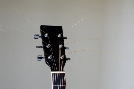 closeup view of guitar head  photo
