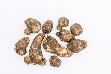 esculenta: Taro root tuber Colocasia esculenta