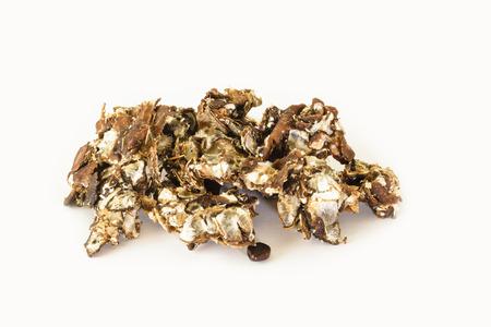 tamarindo: pulpa de tamarindo (para su uso en el curry)