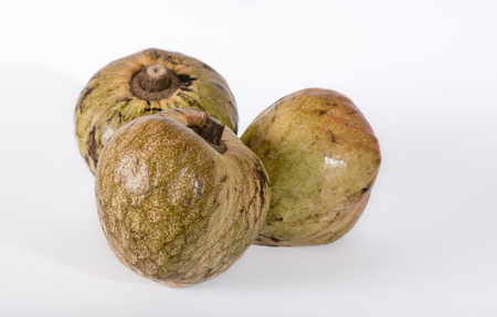 Custard Apple or Ramphal (Annona reticulata} fruits om a white background Stock Photo