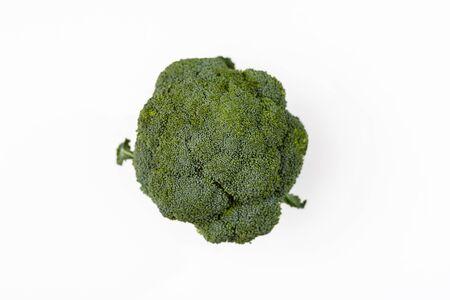 Single Broccoli (Brassica oleracea) on a white background 写真素材