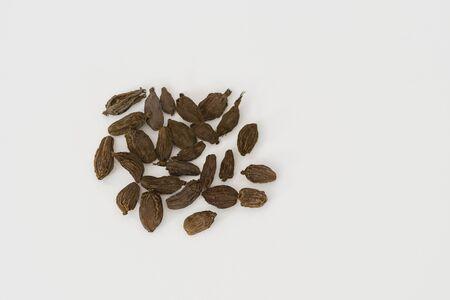 Black cardamom (Amomum subulatum) on a white background