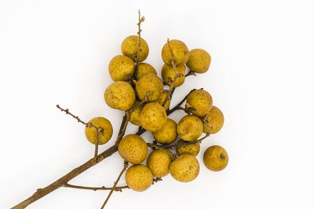 Bunch of longan fruits (Dimocarpus longan) on a white background