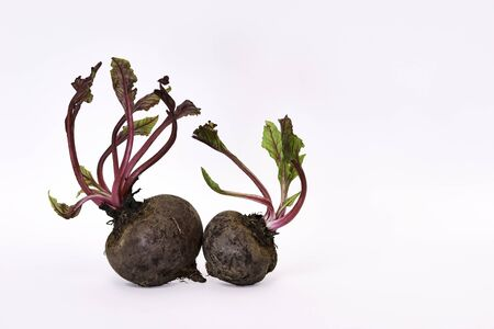 Fresh Beetroot tubers with leaves on a white background 写真素材