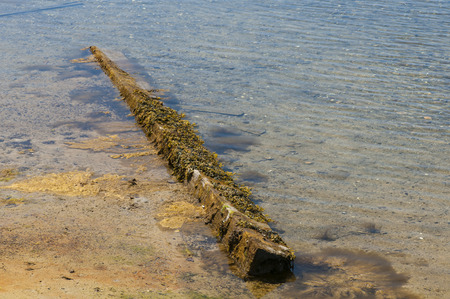 finds: Waterlogged timber finds a home on a Cape Cod beach Stock Photo