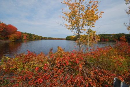 turner: Fall in full color at Turner Reservoir in Rhode Island