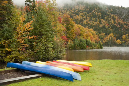 Colorful kayaks competing with foliage on wet morning at a mountain lake