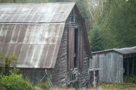 rusts: Dilapidated old barn on a misty morning