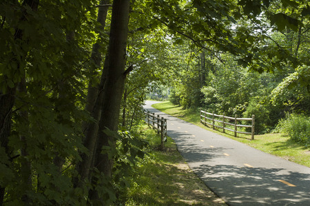 bikeway: Peaceful bike path curves out of sight