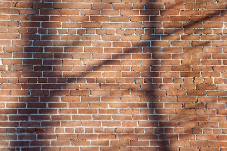 bikeway: Sun creates tree shadows on the brick wall of an old factory