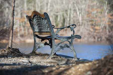 unoccupied: Unoccupied bench overlooking pond in late winter Stock Photo