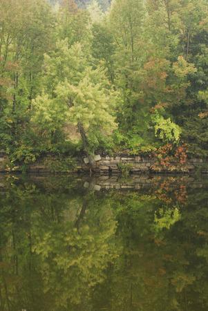 bikeway: Riverside reflection