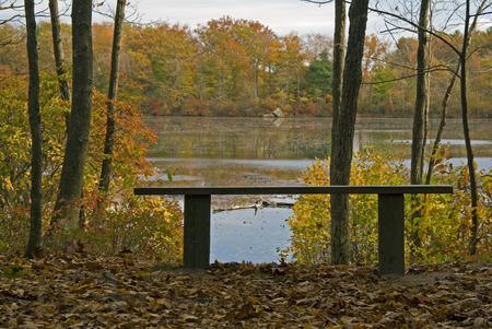 매사추세츠, Easton에있는 Borderland 주립 공원에서 낮은 침출 연못을 내려다 보는 벤치 스톡 콘텐츠