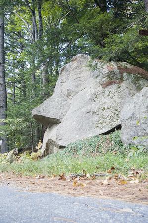 Room-sized roadside granite rock resembles human face Stock fotó