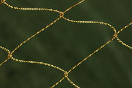 soccer net: Soccer net blowing in wind glistens against grass