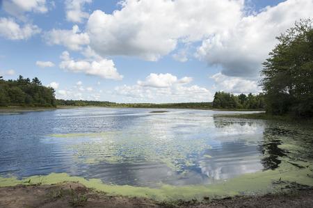 turner: Turner Pond in Dartmouth, Massachusetts
