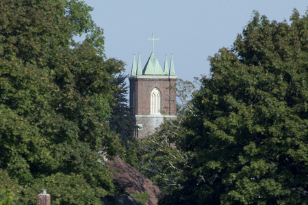 church steeple: Church steeple seen through a gap in the trees Stock Photo
