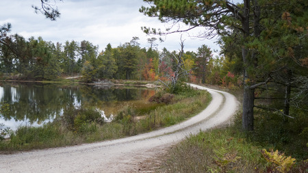 widlife: Seven-mile long Marshland Wildlife Drive winds through Seney National Widlife Refuge