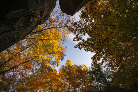 chasm: Glow of fall foliage in the sun at Purgatory Chasm in Sutton, Massachusetts Stock Photo