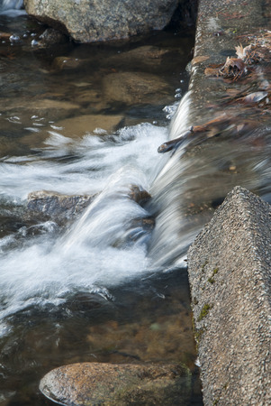 rushes: Water rushes downstream over small spillway from pond