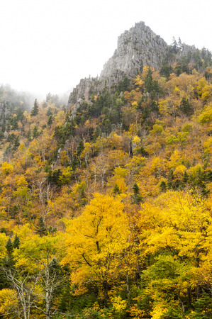 craggy: Craggy granite peak looms over autumn foliage on a misty day Stock Photo