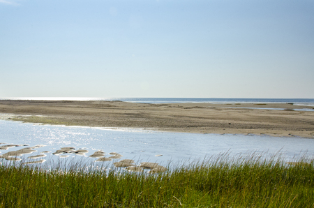 Tidal flats exposed on Cape Cod Bay