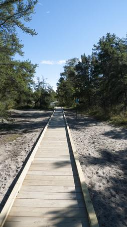 whitefish: New boardwalk through scrub pines leads to Whitefish Point on Lake Superior