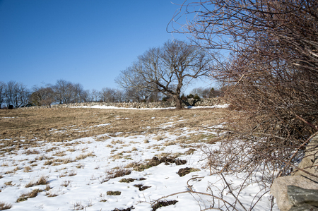 perimeter: Stone walls mark pasture perimeter in New England
