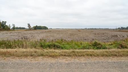 meadowland: Meadowland along Prairies Edge Wildlife Drive, Sherburne National Wildlife Refuge in Minnesota