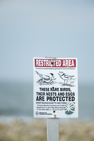 breeding ground: Sign warns public about nearby breeding ground for terns and plovers