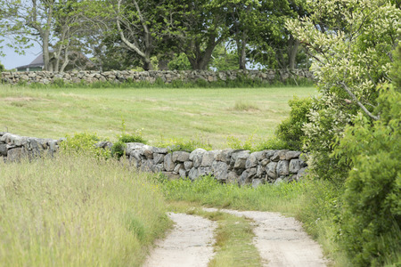 diverted: Dirt road through field diverted by New England stone wall Stock Photo
