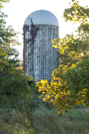Old silo backlit on autumn afternoon