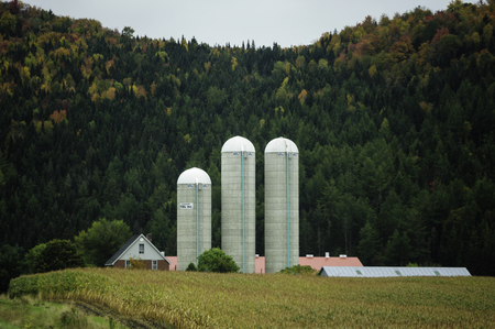 hereford: East Hereford, Quebec, Canada - September 30, 2009: Three silos stand out against green hillside Editorial