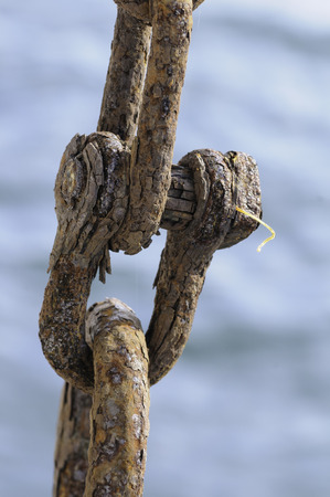Badly corroded iron shackle joining chain links